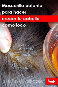 Mascarilla potente para hacer crecer tu cabello como loco. ¡Sólo 2 ingredientes! Why Hair Loss, Oil For Hair Loss, Prevent Hair Loss, Best Hair Loss Shampoo, Biotin For Hair Loss, Natural Shampoo, Natural Hair Care, Natural Hair Styles, Essential Oils For Hair