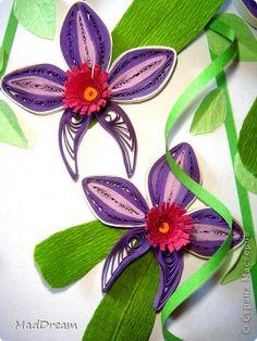 Картина, панно Квиллинг: Квиллинг: Выставка орхидей =) Бумажные полосы. Фото 4