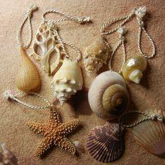 Seashell and Starfish Ornaments