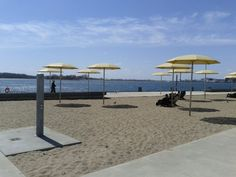 tiny beach at harbour front, toronto: was just there. In the middle of a concrete jungle lies this beach.
