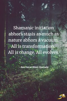 """""""Shamanic initation abhors stasis as much as nature abhors a vacuum. All is transformation. All is change. All evolves."""" - don Oscar Miro-Quesada Nature Abhors A Vacuum, Shaman Woman, Life Affirming, Architecture Quotes, Nature Spirits, Street Smart, Shamanism, Spirit Guides, Guided Meditation"""