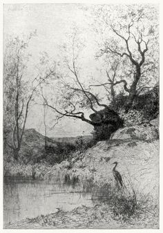 A pond.  From an etching by Adolphe Appian, from The golden age of engraving, by Frederick Keppel, New York, 1910.