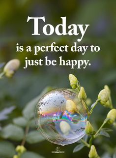Happy Quotes, Happiness Quotes, Just Be Happy, A Perfect Day, Christmas Bulbs, Holiday Decor, Inspiration, Affirmations, Therapy