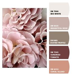 51 Best Ideas For Flowers Roses Pink Ana Rosa Nectar And Stone, Pretty In Pink, Pink Flowers, Beautiful Flowers, Pastel Roses, Perfect Pink, Pink Peonies, Simple Flowers, Flowers Pics