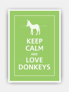 Keep Calm and LOVE DONKEYS