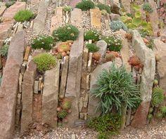 Crevice gardens [Archive] - Gardenbuddies.com