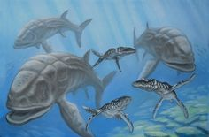 Lioplurodon hunts a herd of leedsichthys.