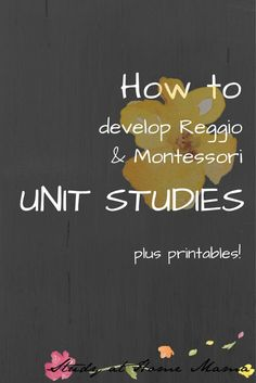 I would use this as a reference of how to have a reggio inspired classroom.