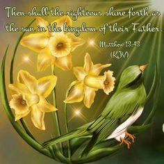 Matthew 13:43 KJV