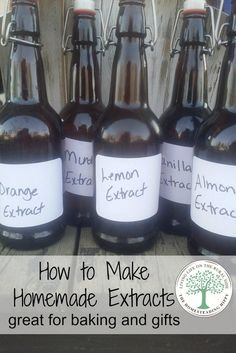 Make your own extracts for delicious baking and gift giving! The Homesteading Hippy *homesteadhippy * Learn more by visiting the image link. Homemade Spices, Homemade Seasonings, How To Make Homemade, Homemade Breads, Homemade Dry Mixes, Do It Yourself Food, Masterchef, Milk Shakes, Spice Mixes