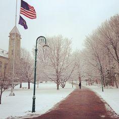 Bloomington....IU...Tree City!