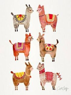 Giclee Print: Alpacas by Cat Coquillette : 16x12in