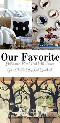 Favorite Halloween Pins that Will Thrill You but not Spook you Craft Projects For Adults, Diy Home Decor Projects, Easy Home Decor, Easy Diy Projects, Classy Halloween, Holidays Halloween, Halloween Decorations, Halloween Ideas, Halloween Tricks