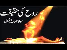 Quran Aur Hadees: Rooh Aur Jisam By Dr Israr Ahmad Islamic Society, Quran, Outdoor Decor, Holy Quran
