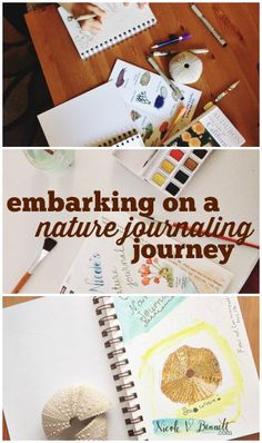embarking on a nature journaling journey (and simplifying science lessons)
