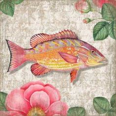 Coastal Yellow Snapper Wall Art from Suzanne Nicoll