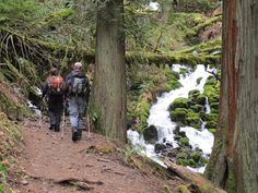 Hike Yourself Into Shape: 10 Conditioning Hikes Near Portland – Author Paul Gerald Hikes Near Portland, Washington County, Columbia River Gorge, Hiking Trails, Excercise, Oregon, Places To Go, Conditioner, Author