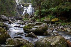 stevensons falls, otways national park: travel plus walk Wedding Photo Inspiration, Naturally Beautiful, Waterfall, National Parks, Wedding Photos, Camping, Australia, Nature, Travel