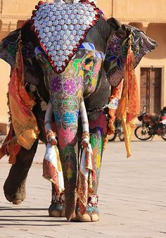 *INDIA ~ Elephant Festival: Gaily painted and covered in brightly coloured + gilded clothes, the Elephants of Jaipur parade through the streets run races, play polo + participate in Holi, the festival colours.
