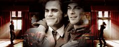 The Vampire Diaries Stefan & Damon Salvatore Vampire Diaries The Originals, The Vampire Diaries 3, Paul Wesley, Stefan Salvatore, Hyanna Natsu, The Salvatore Brothers, Popular Book Series, Damon And Stefan, Vampire Daries