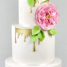 Home & Garden 100% True Fmm Cutters Baby Shower Kit Cake Icing Fondant Cutting Sugarcraft Tools Set