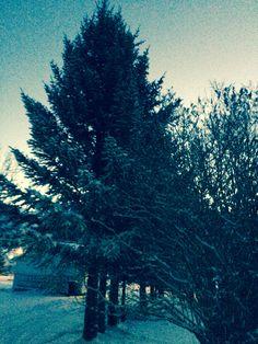 ❄️ Mountains, Winter, Nature, Travel, Winter Time, Naturaleza, Viajes, Destinations, Traveling
