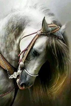 Animals Discover Unicorn in the Forest Cute Horses, Pretty Horses, Horse Love, Most Beautiful Horses, Animals Beautiful, Beautiful Horse Pictures, Beautiful Beautiful, Horse Artwork, Horse Paintings