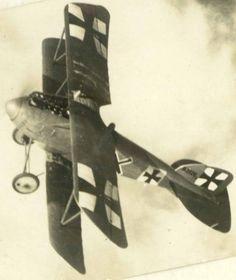Albatros D.III 2126/16, Vzfw. Josef Heiligers, Jasta 30, 1917