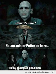 haha Can't stop laughing | Voldemort Trolled :D :D #PotterMemes #HarryPotter