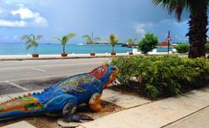 A little salt in the air in George Town, Grand Cayman