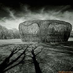 Giuliano Mauri.... Contemporary Baskets, Contemporary Artists, Land Art, Weaving Art, Italian Artist, Environmental Art, Art Object, Public Art, Installation Art