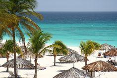 Bucuti, Aruba. Book an all inclusive trip to Aruba this winter on www.click2xscape.com