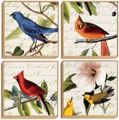 Image result for Audubon birds prints
