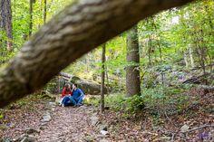 Amber & Jake | Cascade Springs Park - Molly Weir Photography
