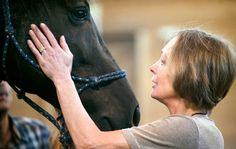 More Spas Offer Equine Therapy - NYTimes.com
