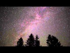 ▶ Nighttime Forest Sounds 11 Hours - Forest at night, gentle cricket sound for relaxation, yoga - YouTube