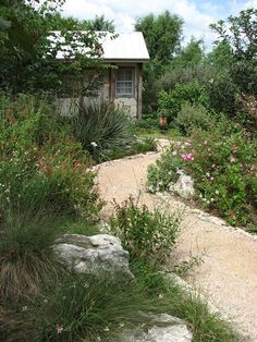 Pam Penick's photo of Texas Hill Country style garden at Watersaver Lane, San Antonio Botanical Garden