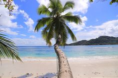 Just a view from Seychelles