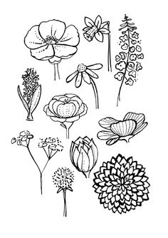 1000 Ideas About Simple Flower Drawing On Pinterest