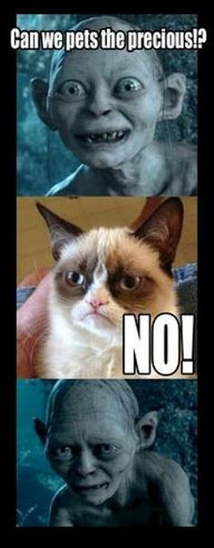 new ideas for funny memes truths seriously grumpy cat Memes Humor, Cat Memes, Funny Memes, Hilarious, Jokes, Funny Cats, Funny Animals, Cute Animals, Grumpy Cat Meme