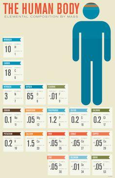 Elementos químicos y en que porcentaje están presentes en el cuerpo humano / The human body: elemental composition by mass