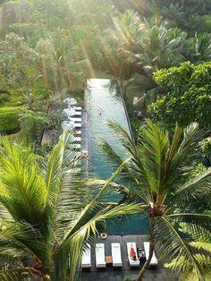 tropical bathroom accents and accessories Vacation Places, Dream Vacations, Villa Design, Design Hotel, Design Design, Natural Swimming Pools, Beautiful Pools, Dream Pools, Swimming Pool Designs