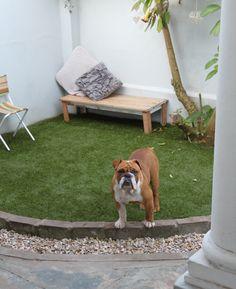 Artificial lawn. Fake grass. Artificial lawn. #artificial. #DIY #Gardenideas. Small garden ideas.
