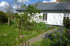 Check out this awesome listing on Airbnb: Peace and quiet in a Cornish garden in Lostwithiel