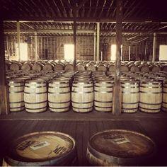 Bourbon Barrels Buffalo Trace, Bourbon Barrel, Barrels, Distillery, Tea Lights, Candles, Tea Light Candles, Candy, Candle Sticks