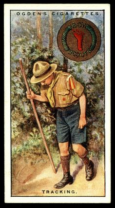 "Cigarette Card - Boy Scouts ~ Tracking      Ogden's Cigarettes ""Boy Scouts"" (series of 50 issued in 1929)  #49 Tracking"