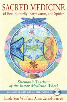 Sacred Medicine of Bee, Butterfly, Earthworm, and Spider: Shamanic Teachers of the Instar Medicine Wheel: Spiritual lessons from insect archetypes of the Medicine Wheel BR BR Books To Buy, Books To Read, My Books, Butterfly Transformation, Meditation Cd, Occult Books, Medicine Wheel, Medicine Book, Earthworms