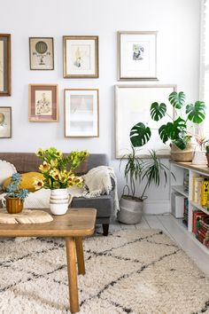 Gallery wall, berber rug, plants and books.