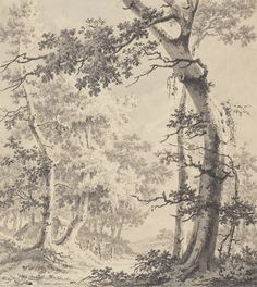 Paulus van Liender (Dutch, 1731 - about Pen and gray ink and wash over black chalk; 32 × 29 cm × 11 in. Landscape Drawings, Landscape Paintings, Wooded Landscaping, Getty Museum, Old Trees, Oil Painters, Ink Pen Drawings, Classic Image, Old Master