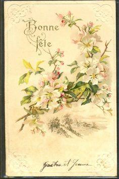 GE161-BRANCHES-Fleuries-Paysage-FANTAISIE-Gaufree-RELIEF